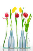 Tulips in vases — Stock Photo