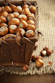 Hazelnuts in basket — Stock Photo