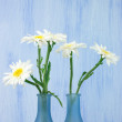 Daisy bouquet — Stockfoto