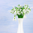 Snowdrops bouquet — Stock Photo #42676271