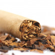 Cigar and tobacco — Stock Photo #4430151