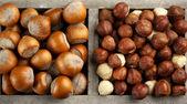 Hazelnuts in wooden box — Stockfoto