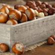 Hazelnuts in wooden box — Stock Photo #46836591