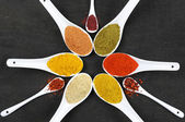 Assorted ground spices — Stockfoto