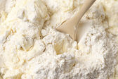 Cooking: kneading dough close-up — Stock Photo