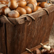 Hazelnuts in basket — Stock Photo #47870209