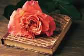 Rose and vintage book — Stock Photo