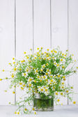 Chamomiles bouquet — Stock Photo