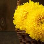 Chrysanthemum in basket — Stock Photo #48921477