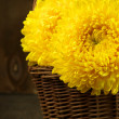 Chrysanthemum in basket — Stock Photo #50101513
