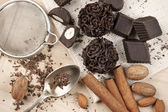 Homemade chocolate candies — Foto Stock