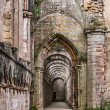 Fountains Abbey ruins - Stock Photo