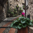 Dolceacqua, Liguria, Italy — Stock Photo