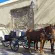 Horse carriage — Stock Photo #12399924