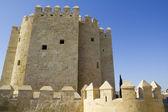Calahorra Tower in Cordoba. — Stock Photo