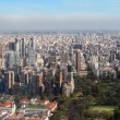 Panorama of Buenos Aires, Argentina — Stock Photo #16206943