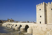 View of Cordoba. Andalusia — Stock Photo