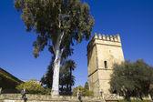 ライオンズの塔.コルドバのアルカサル. — ストック写真