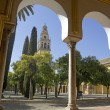 Cathedral of Cordoba — Stock Photo