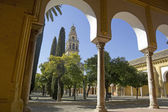 Cathedral of Cordoba — 图库照片