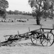 Antique farming equipment — Stock Photo #19991947