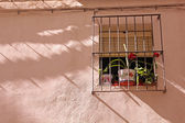 Typical Mediterranean window with flowers. — Stock Photo