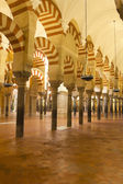 The Great Mosque in Cordoba, Spain — Stockfoto