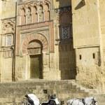 Horse carriage. Cordoba. Andalusia, Spain. — Stock Photo