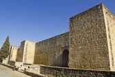Walls of Cordoba, Spain. — Stock Photo