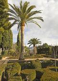Alhambra gardens — Stock Photo