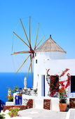 Windmill in Oia village on Santorini island, Greece — Stock Photo