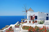 Traditional architecture of Oia village at Santorini island in G — Stock Photo