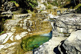 The green waters of Voidomatis river that flows through Epirus r — Stock Photo