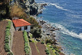 Traditional house at the beach, Greece — Stock Photo