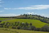 Paisagem de campo de grama verde com nuvens fantásticas no backgro — Foto Stock