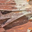 Cracked wood as background texture — Stock Photo