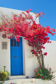 Traditional greek door on Sifnos island, Greece — Stock Photo