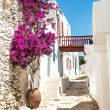 Traditional greek alley on Sifnos island, Greece — Stock Photo #26952577