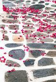 Petali di rosa bouganville a vicolo sull'isola di mykonos, grecia — Foto Stock