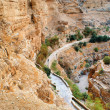 canyon in the judean desert on the west bank — Stock Photo