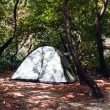 Camping Tents at Campground during Daytime in Woods — Stock Photo