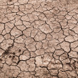 Dry cracked earth background, clay desert texture — Stock Photo #36046979