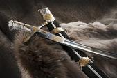 古剑 — 图库照片