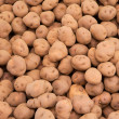Potatoes harvest background — Stock fotografie #12673417