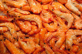 Multitude of shrimps — Stock Photo