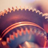 Gear wheels close-up — Stock Photo
