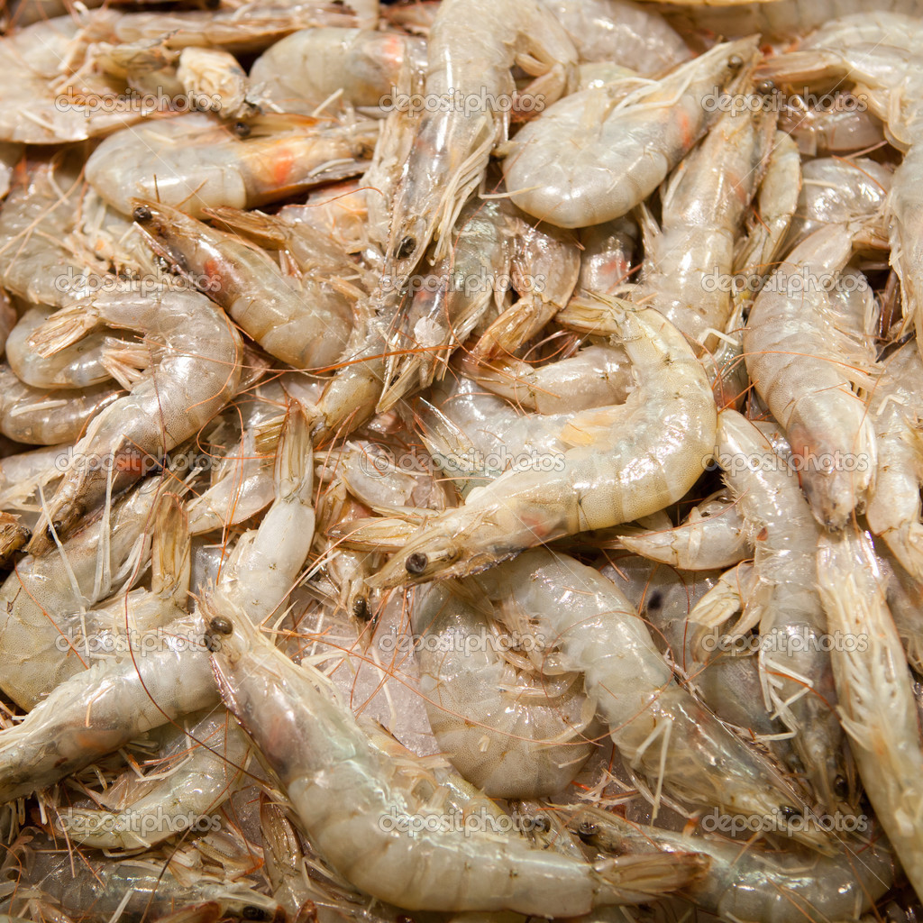 Raw shrimps — Stock Photo #13088033