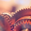 Gear wheels close-up — Stock Photo #13414893