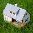 Stock Photo: House on green
