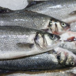 Fresh fish on ice at market — Stock Photo #14734321